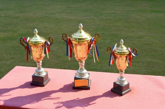 trophy-83115_1280